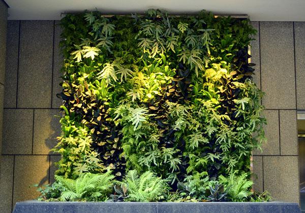 _0003_Vertical-Garden_100-Pine_San-Francisco_c.Chris-Bribach_PlantsOnWalls.com