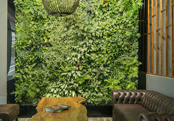 _0004_Organic-space-vertical-garden-south-africa-listing